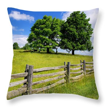 Beautiful Virginia Pasture Throw Pillow