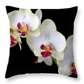 Beautiful White Orchids Throw Pillow by Garry Gay