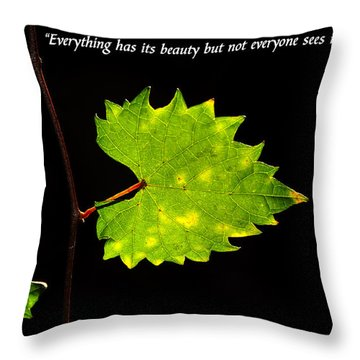 Beauty And Confucius Throw Pillow by David Lee Thompson