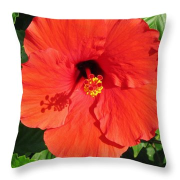 Beauty In Red And A Touch Of Yellow Throw Pillow by Craig Wood