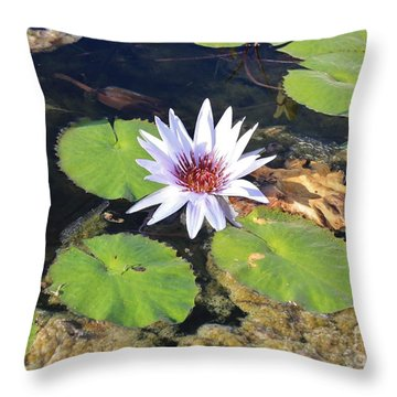 Beauty In The Muck Throw Pillow by Craig Wood