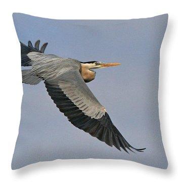 Beauty Of Flight Throw Pillow