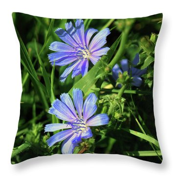 Beauty Of The Field Throw Pillow