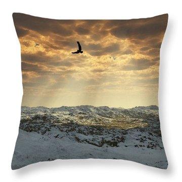Beauty Of Winter Throw Pillow by Julie Grace