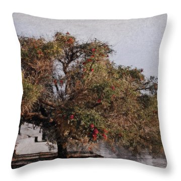 Beauty On The Path Throw Pillow