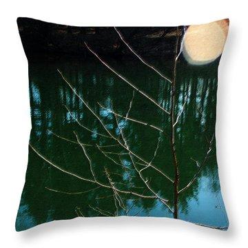 Beauty Spot Throw Pillow by Vilas Malankar