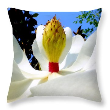Bed Of Magnolia Throw Pillow by Karen Wiles