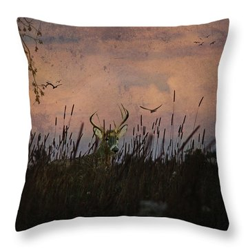 Bedding Down For Evening Throw Pillow by Lianne Schneider