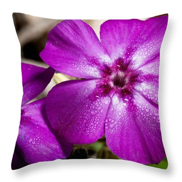 Bedeweled Throw Pillow by Christopher Holmes