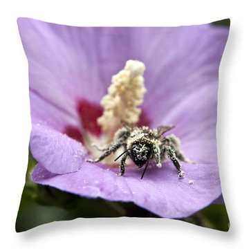 Throw Pillow featuring the photograph Bee Covered In Pollen  by Jeannette Hunt