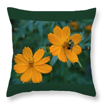 Throw Pillow featuring the photograph Bee On Cosmos Flower  by Tom Wurl