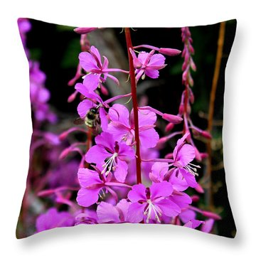 Throw Pillow featuring the photograph Bee On Fireweed In Alaska by Kathy  White