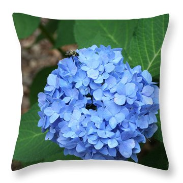Bee On Hydrangea Throw Pillow by Michael Waters