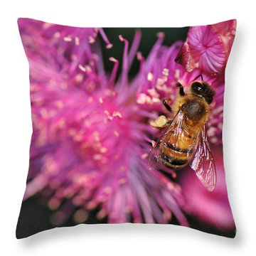 Bee On Lollypop Blossom Throw Pillow by Kaye Menner