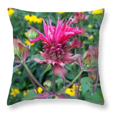 Beebalm Flower Throw Pillow
