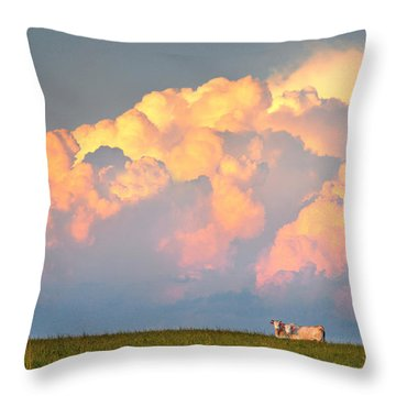 Beefy Thunder Throw Pillow