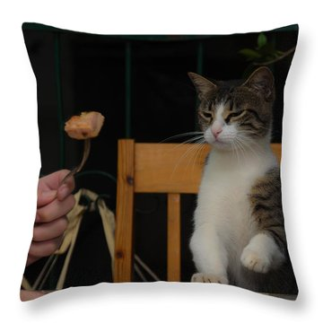 Before The Attack Throw Pillow