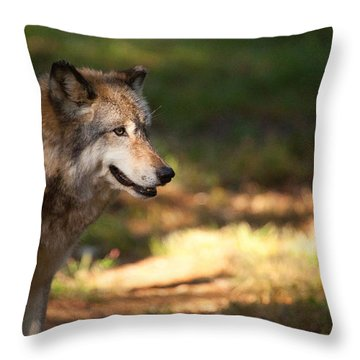 Behind The Tree Throw Pillow by Karol Livote
