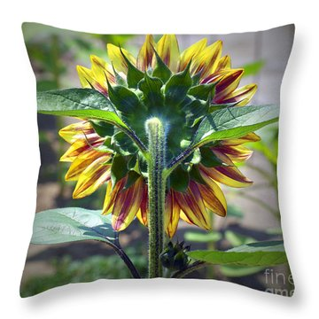 Behind You Throw Pillow by Gwyn Newcombe