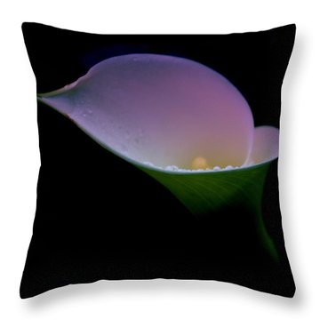Behold The Beauty Throw Pillow
