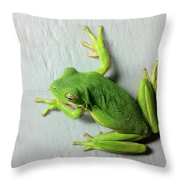 Being Green Throw Pillow by Dan Wells