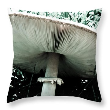 Bellows Throw Pillow
