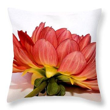 Beneath Me Throw Pillow by Susan Smith