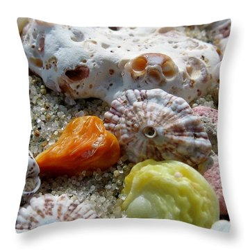 Bermuda Beach Shells Throw Pillow by Janice Drew