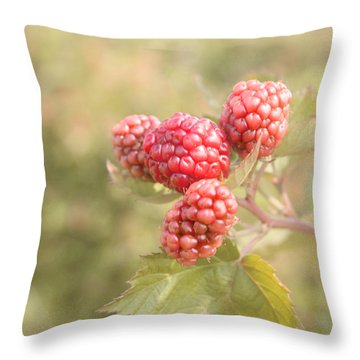 Berry Good Throw Pillow by Kim Hojnacki