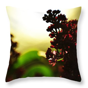 Between Me And The Sun Throw Pillow by Rebecca Sherman