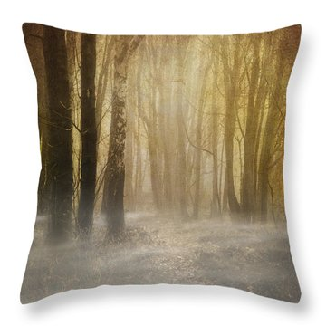 Beware Misty Woodland Path Throw Pillow by Meirion Matthias