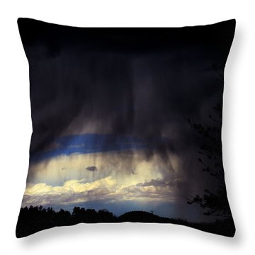 Throw Pillow featuring the photograph Beyond The Veil by Susanne Still