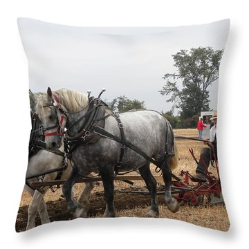 Bickleshire 10 Throw Pillow