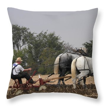Bickleshire 11 Throw Pillow