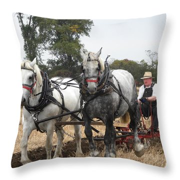 Bickleshire 6 Throw Pillow