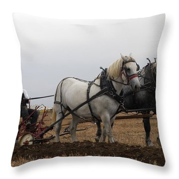 Bickleshire 7 Throw Pillow