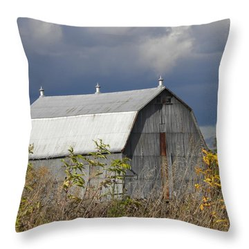 Big Barn Throw Pillow