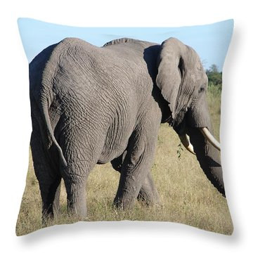 Big Bill From The Back Throw Pillow