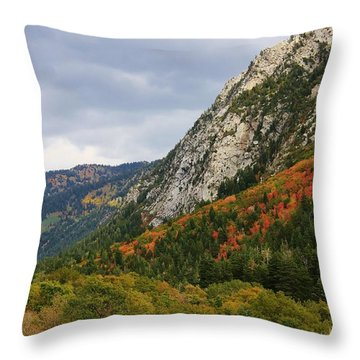 Big Cottonwood Canyon 2 Throw Pillow by Bruce Bley