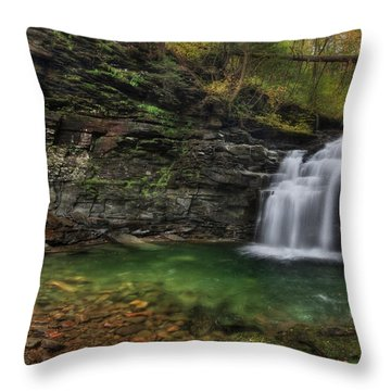 Big Falls - Heberly Run Throw Pillow