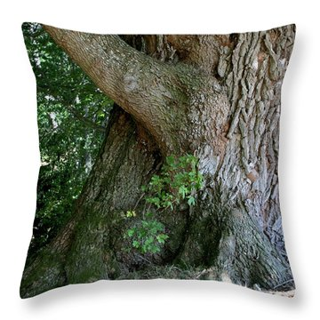 Big Fat Tree Trunk Throw Pillow