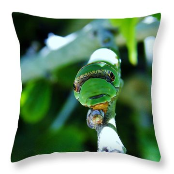 Big Green Caterpillar Throw Pillow