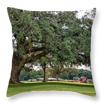 Big Oak And The Tractors Throw Pillow by Michael Thomas