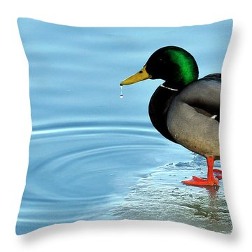 Bill Droplet Throw Pillow