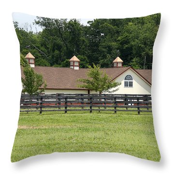 Birch Creek Farm Throw Pillow