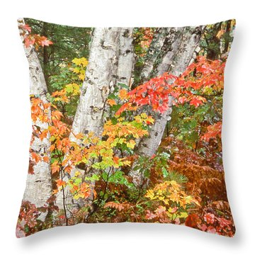 Birches Up Of Michigan Throw Pillow
