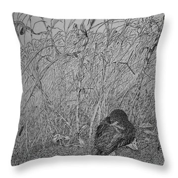 Bird In Winter Throw Pillow by Daniel Reed