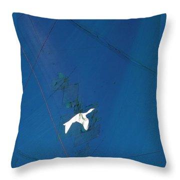 Bird Net Throw Pillow by Jocelyn Kahawai