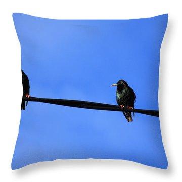 Bird On A Wire Throw Pillow by Aidan Moran