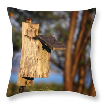 Birdhouse 23 Throw Pillow by Andrew Pacheco